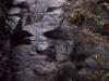 Höhenweg Honigsteine
