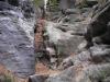 Honigsteine - foto2