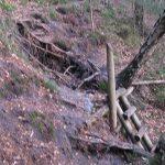 06-honigsteine-neuer-weg