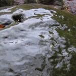 glasierte Steine