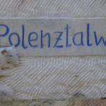 Polenztal 09.03 (1)