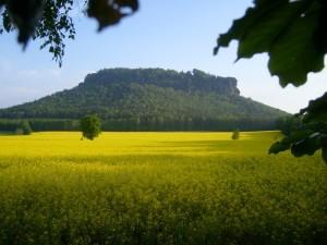 Vom Lilienstein aus in die Sächsische Schweiz und noch weiter