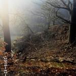 04-Stille-Gruende-Abbruchkante