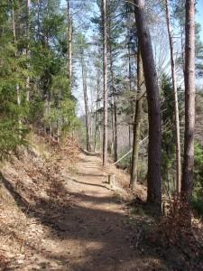 Seibtweg original nahe bei Nikolsdorf