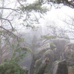 schöner Nebel