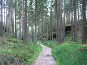 Hinterer Heideweg