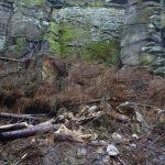 Holzfäller und Steinbrecher