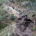 Erosion unterhalb der ersten Treppe